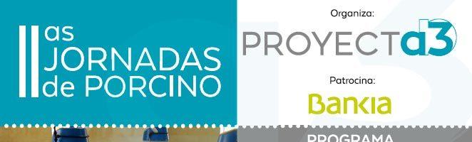 """II JORNADA SECTOR PORCINO PROYECTA3, """"Bioseguridad, Sanidad, Bienestar y Medio Ambiente"""""""